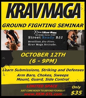 Part 2 - Ground Fighting & Striking Workshop